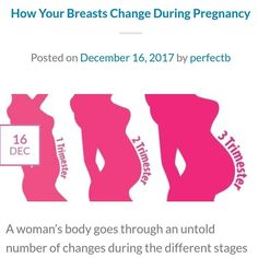 Breasts and breastfeeding
