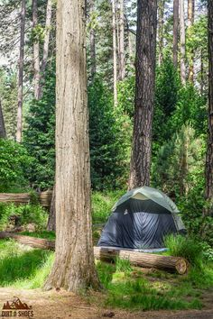 Ready for the trip of a lifetime? Learn the tips and tricks for camping in Yosemite National Park with this guide -- written by a former park ranger! Yosemite Campgrounds, Yosemite Camping, Best Campgrounds, Camping List, Tent Camping, Outdoor Camping, Campsite, Camping Storage, Camping Tricks