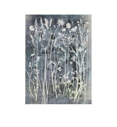 Large Original botanical print Stef Mitchell Nature art Summer flowers from an English hedgerow A dusky rainbow of yellow bank and blues Plant Growth, Nature Prints, Mark Making, Art Portfolio, Summer Flowers, Botanical Prints, Art Ideas, Blues, Rainbow