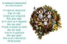 Doamna Fagilor: Rime prichindești, ghidușe pentru zile jucăușe... ... Nursery Rhymes, Songs, Languages, Preschool, Birds, Play, Idioms, Kid Garden, Bird