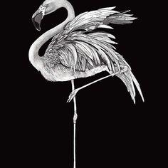 Reposting @vonklinkart: Flamingo from my Pewter Bird Series, 6b✏️ #vonklinkart #supportlocal #flamingo #miami #bird #standtall #art #artwork #artist #steveklinkel