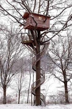 Treehouse Treehouse Treehouse...amazing!  I'm a 'tree hugger' & I could live in this one! :)