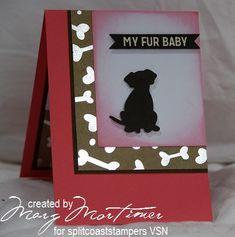 APRVSN17B, Fur Baby