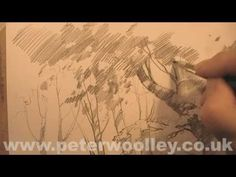 ▶ A Sketch A Day: Woodland Walk - Sketching Demonstration by PETER WOOLLEY - YouTube