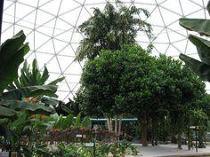 Disney World Epcot Greenhouse