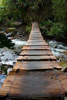 Footbridge, Valle de Cocora, Colombia