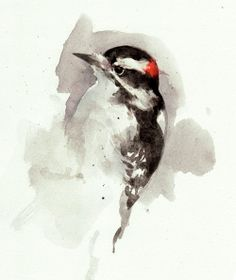 Woodpecker watercolor painting. Symbolic for beating to your own drum. :)
