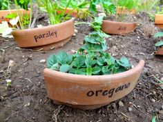 use your old cracked terra cotta pots as plant markers