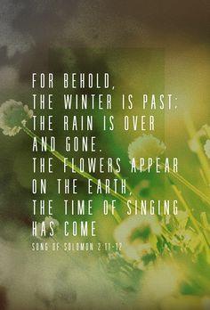Song of Solomon 2:11-12