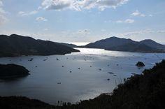 【徳島県 大毛島(ウチノ海)】鳴門海峡、小鳴門海峡、瀬戸内海、紀伊水道の4つの激しい海流に囲まれた穏やかなウチノ海。スポーツを楽しんだり、芝生でくつろいだり、デイキャンプをしたりできる鳴門ウチノ海総合公園があります。 http://www.naruto-mon.jp/corp/uchinoumisougoukouen/ #Tokushima_Japan #Setouchi
