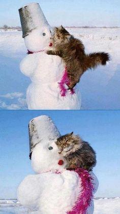 cheshireshecat:  - Here, let me help! Feelig warm nao?