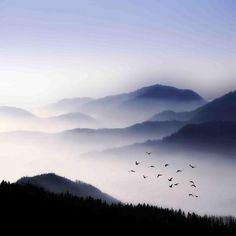 Flying over the Fog Photographic Print by Philippe Sainte-Laudy at Art.com