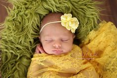 Baby Headband Set. You Pick 1 Infant by Pinkpaisleybowtique, $5.95