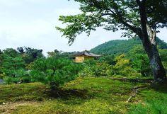 #kinkakuji#temple#golden#pavilion#padiglionedoro#shogun#kyoto#giappone#nippon#japan#japanese#fever#beauty#silence#peace#zen#garden#green#pagoda#lago#lake#crazyinlovewithjapan (by totta0308)