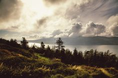 Carlingford lough as viewed from the top of Rostrevor forest park ... www.flashart-photography.com