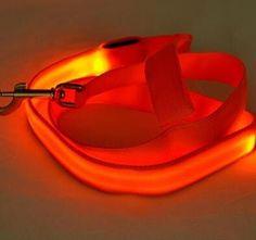 Nylon LED Dog Leash | Night Safety