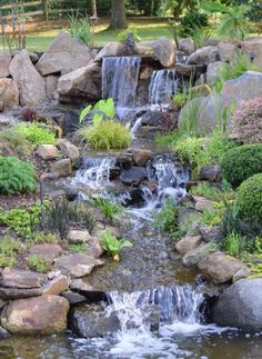 Epic japanischer Garten Wasserpflanzen im Teich Bilder N tzliches f r den Garten Pinterest Outdoor ponds Pond waterfall and Gardens