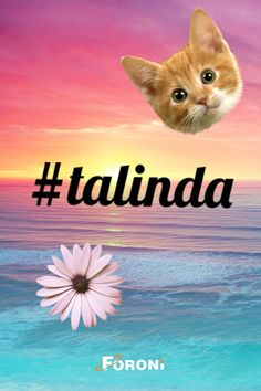 #talinda