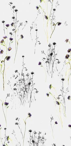 A charming and simple floral wallpaper print from Brett Designs. Visit interiors+sources to find out more.