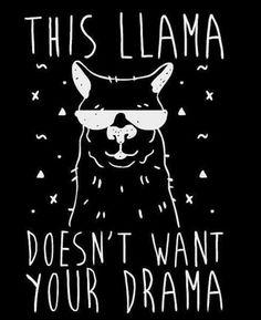 No drama lama's Alpacas, Images Lama, No Drama Lama, Me Quotes, Funny Quotes, No Drama Quotes, Funny Llama, Up Book, Cute Wallpapers