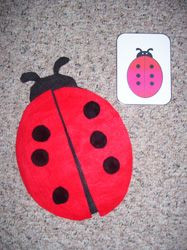 Visual Discrimination Activity for a Ladybug Theme from Making Learning Fun.