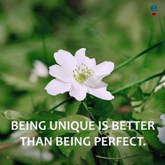 Being unique is better than being perfect.