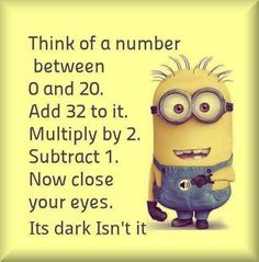 cute minion quote about maths