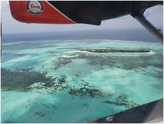 Maldives with Cheralee and Jaryd - Hooray Weddings Sea Plane, Maldives Honeymoon, Crystal Clear Water, Honeymoons, 4 Hours, Ear Plugs, Sounds Like, Pilots, Animal Crossing
