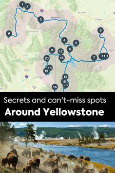 Top Things To See In Yellowstone National Park USA Urlaub - Top 10 things to see in yellowstone national park