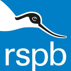 The RSPB is committed to protecting your privacy and security. This policy explains how and why we use your personal data, to ensure you remain informed and in control of your information. Read up on the RSPB website's privacy and cookie policy here. Online Games For Kids, Play Online, Big Garden Birdwatch, Pine Cone Bird Feeder, Bird Guides, Nocturnal Birds, Little Pool, Save Wildlife, Animal Tracks