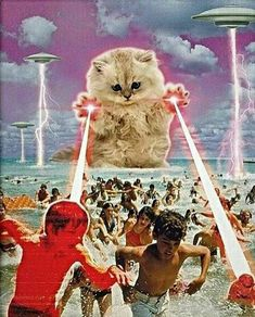 Cats have been famous for hunting mice and rats for as long as cats and people have been together. As strange as it may seem to some people, cats are not born Psychedelic Art, Photomontage, Collages, Art Du Collage, Art Et Illustration, Space Cat, Arte Pop, Grafik Design, Surreal Art