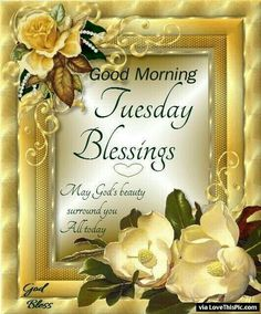 1721 best daily greetings images on pinterest in 2018 good morning good morning tuesday blessings may gods beauty surround you today m4hsunfo