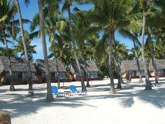 Pacific Resort Aitutaki Beach. one of the Cook Islands