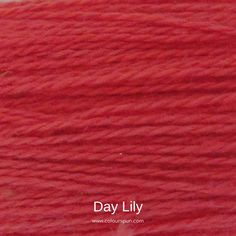 A ColourSpun Pure Cotton Yarn and Embroidery Thread colour swatch. This colour is called Day Lily Colour Swatches, Super Chunky Yarn, Day Lilies, Embroidery Thread, Lily, Pure Products, Cotton, Orchids, Lilies