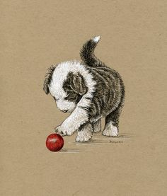 """'Puppy with Red Ball' by Diane Wynen. Pen & Ink drawing of a Bearded Collie puppy with a red ball. Size approx. 7.5"""" x 6.5""""  Materials: Copic Multiliner SP 0.1, Sakura Gelly Roll white pen, FW Acrylic ink (Red) and dip pen, on Strathmore Toned Tan paper"""