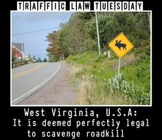 As if you thought these traffic laws couldn't get any stranger...