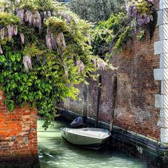 #worldcaptures #w_c_p #igworldclub  #photooftheday #igersitalia #veneziadavivere #vivivenezia #ig_italia #ig_exquisite  #main_vision #igshotz_mag #igshotz  #chaosmag #ig_venezia #iglobal_photographers #volgo_venezia #vasocom #euro_shots #olympuscamera #fotografoitaliano #loves_united_venice #volgo_venezia #ig_italia #fotografi_italiani #loves_venezia #loves_veneto #dm_photofile_venice #veneziaautentica #artistic_vision  #passione_fotografica #don_in_italy by calamorodivenezia