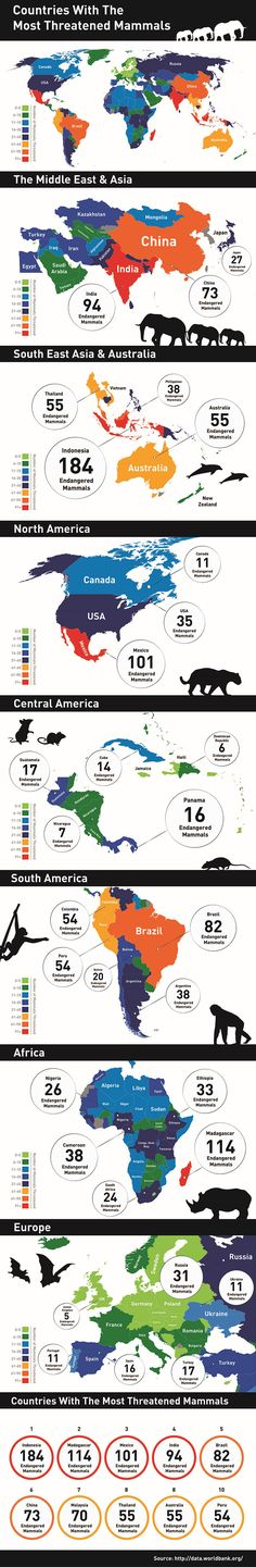 Infographic, animal infographic, animal conservation infographic, animal protection, animal conservation, endangered animals, countries with endangered animals, threatened animals, countries with threatened animals, countries with most threatened animals, The Eco Experts, reader submission,
