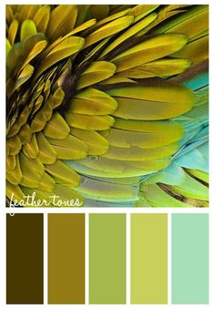 Gold On The Ceiling: Feather Tones