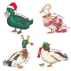 Festive Duck Christmas Cards