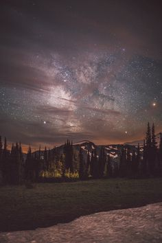 Beautiful night sky stars woods forest mountains