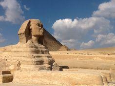 Sfinge sphinx