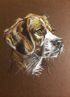 Day #34 - Pastel on card by Lucy Wilson, New Zealand. www.lucywilson-artist.com