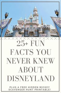 Fun Facts About Disneyland To Use On Your Next Trip! - Your Everyday Family Hotels Near Disneyland, Disneyland Castle, Disneyland Tickets, Disney California Adventure Park, Disneyland Vacation, Disneyland Tips, Cruise Vacation, Disney Cruise, Vacation Destinations