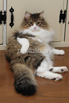 My sexy pose