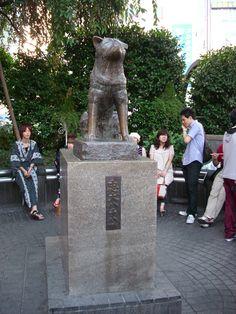meet at the Hachiko