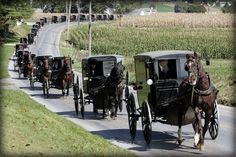 The Amish keep their death rituals private but the funeral for children who died when their horse-drawn carriage overturned in a flash flood in Kentucky offers a rare glimpse into the Amish funeral. Amish Farm, Amish Country, Country Life, Country Roads, Country Kitchen, Amische Quilts, Amish Culture, Ohio, Amish Community