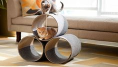 Cool Cat Tree Plans: Easy DIY Cat Furniture Project