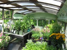 LOVE this Greenhouse Bus idea