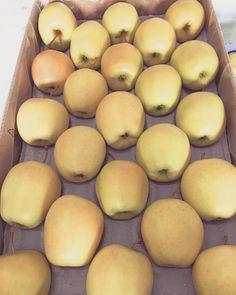 Delicious.... #EnjoyFruit #ByDelBello #Lovita #ItalianFlavour #TasteMe #BiteMe #LadyApple #FromItalyWithLove #EatItalian #WeAreComing #WeAreReady #FruitLover #instafood #PremiumQuality #GoldenDelicious #ApplesGoldenDelicious #apples #amazing #mangiamela #melamangio #EatHealthy #fruit #food #LoveNature #gnam #foodporn #fruitporn #Canada